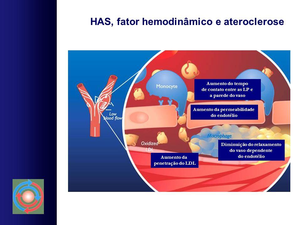 HAS, fator hemodinâmico e ateroclerose