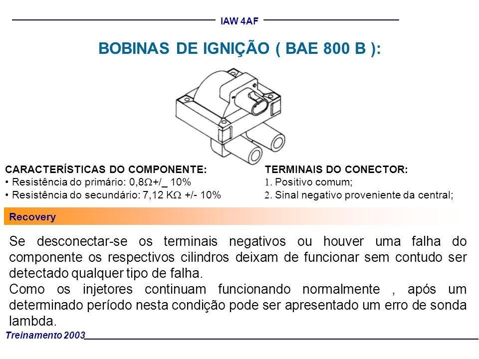 BOBINAS DE IGNIÇÃO ( BAE 800 B ):