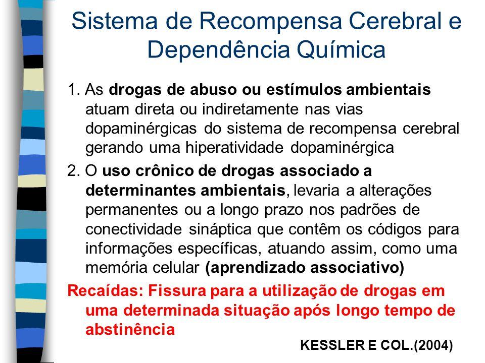 Sistema de Recompensa Cerebral e Dependência Química