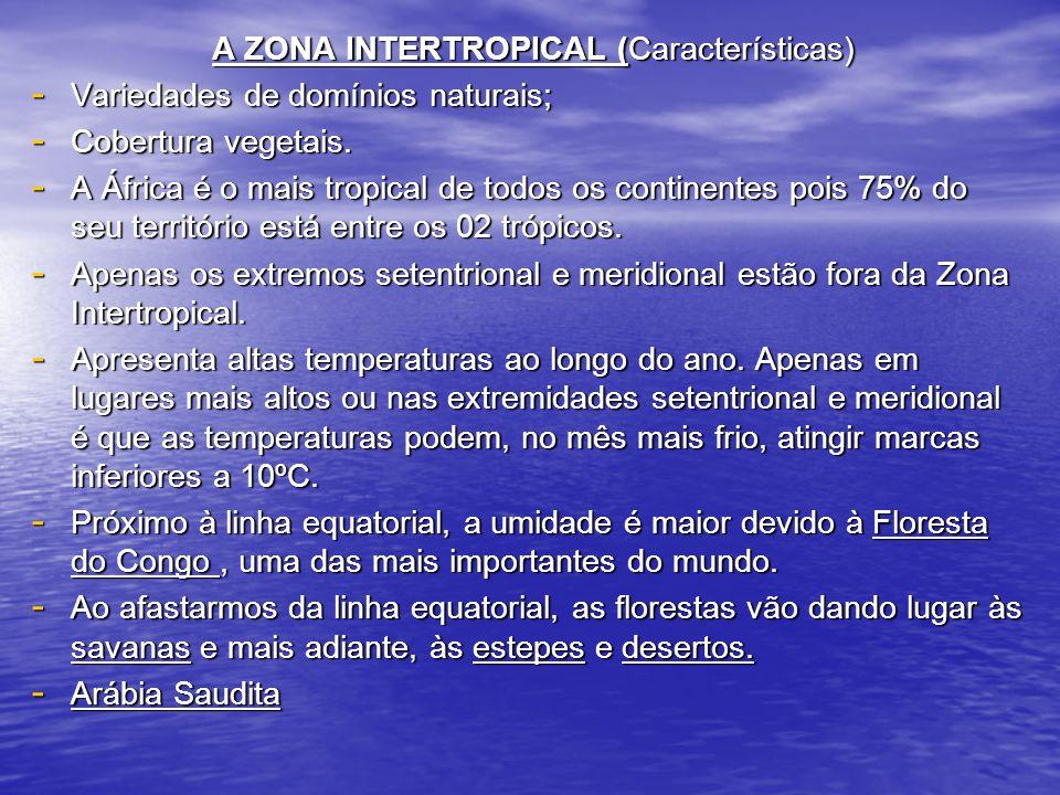 A ZONA INTERTROPICAL (Características)