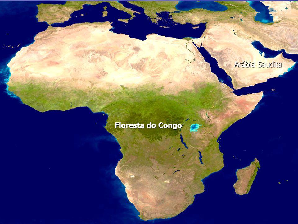 Arábia Saudita Floresta do Congo