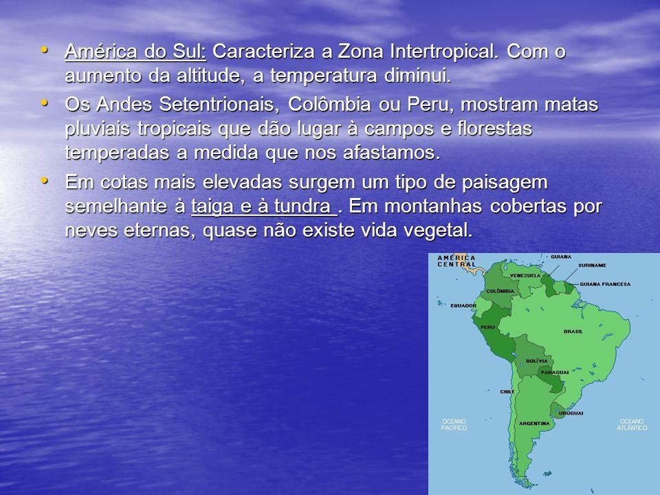 América do Sul: Caracteriza a Zona Intertropical