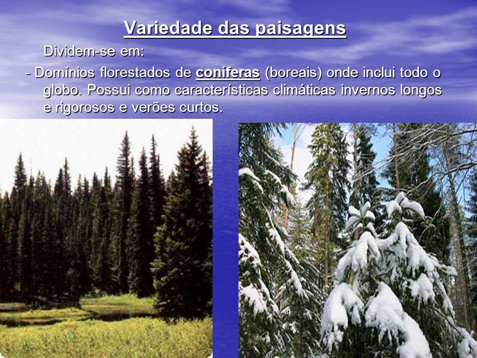 Variedade das paisagens