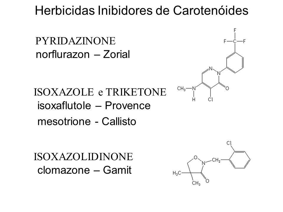 Herbicidas Inibidores de Carotenóides