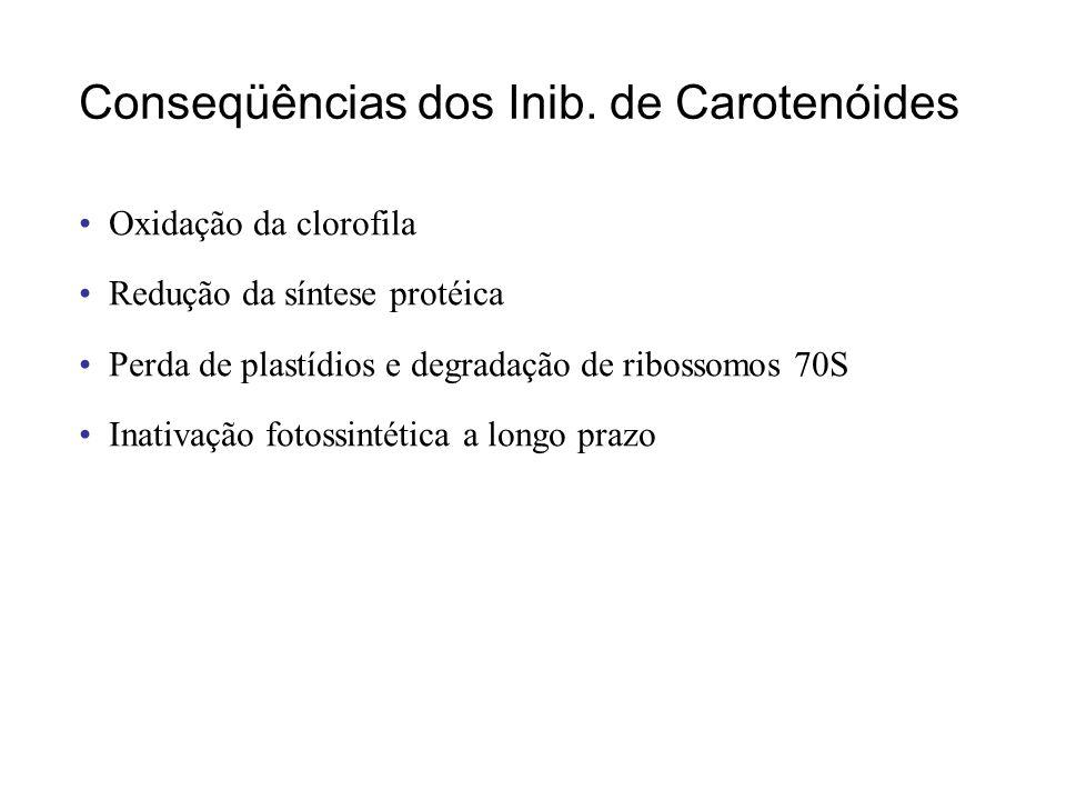 Conseqüências dos Inib. de Carotenóides