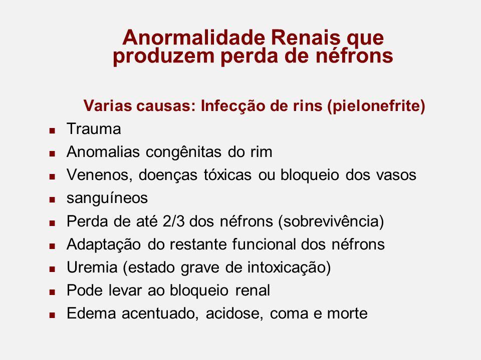 Anormalidade Renais que produzem perda de néfrons