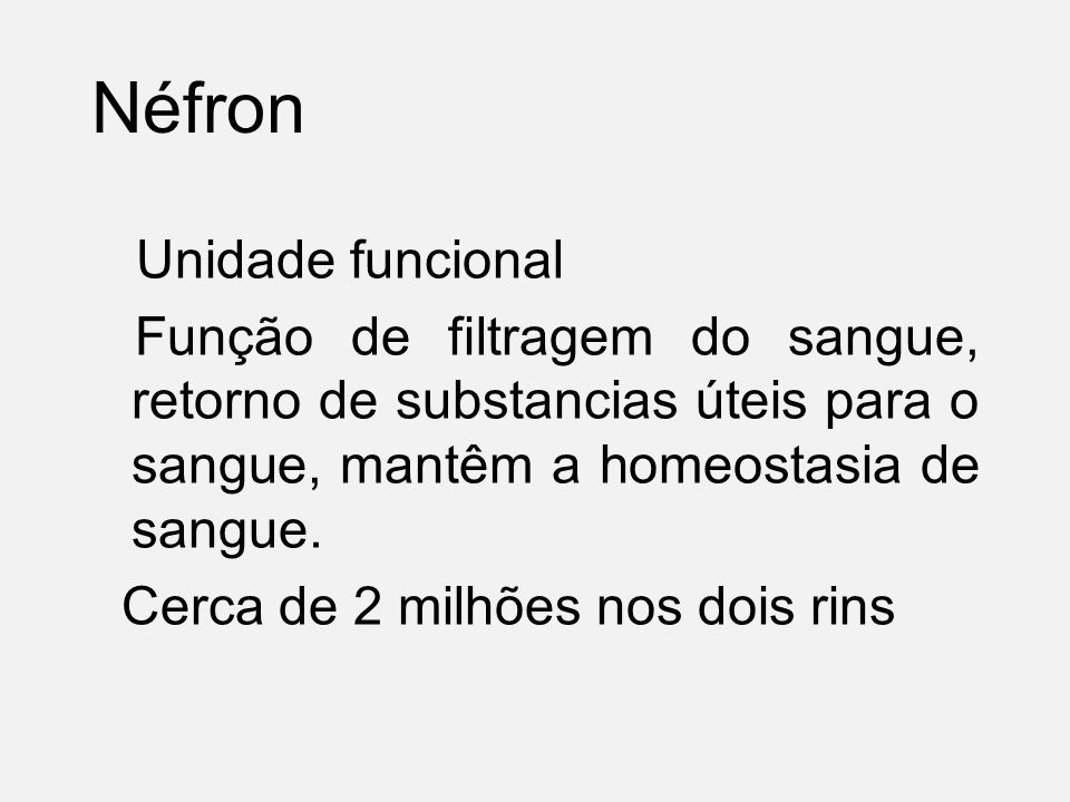 Néfron