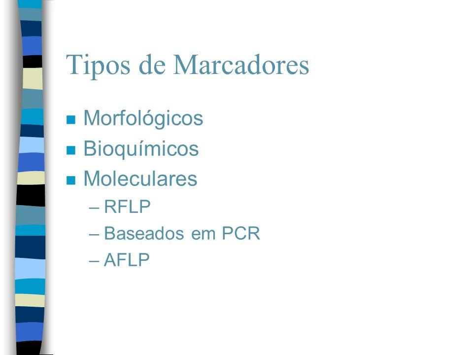 Tipos de Marcadores Morfológicos Bioquímicos Moleculares RFLP