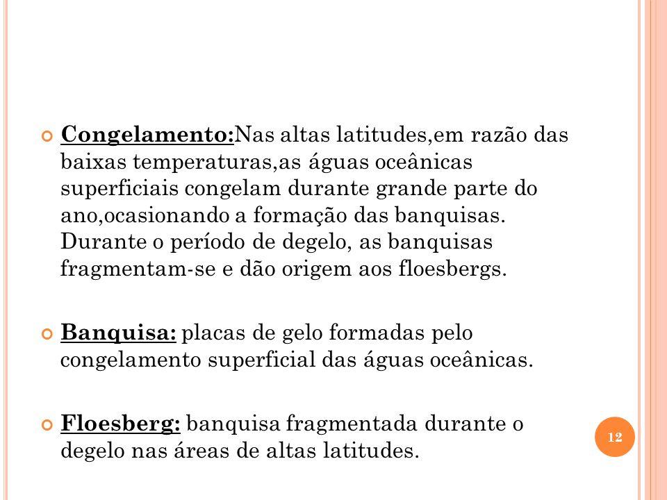 Congelamento:Nas altas latitudes,em razão das baixas temperaturas,as águas oceânicas superficiais congelam durante grande parte do ano,ocasionando a formação das banquisas. Durante o período de degelo, as banquisas fragmentam-se e dão origem aos floesbergs.