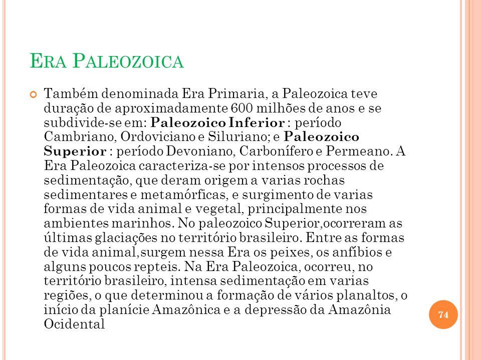 Era Paleozoica