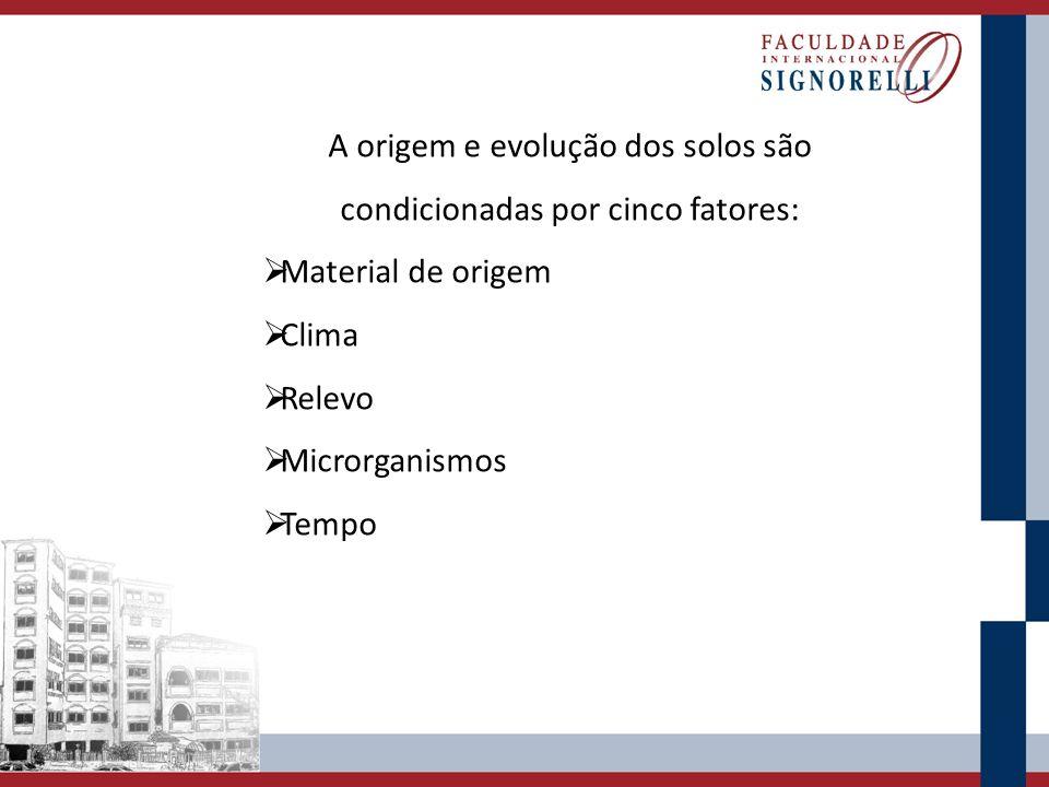 A origem e evolução dos solos são condicionadas por cinco fatores: