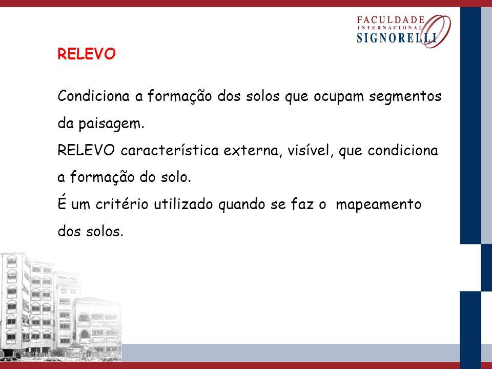RELEVO Condiciona a formação dos solos que ocupam segmentos da paisagem. RELEVO característica externa, visível, que condiciona a formação do solo.