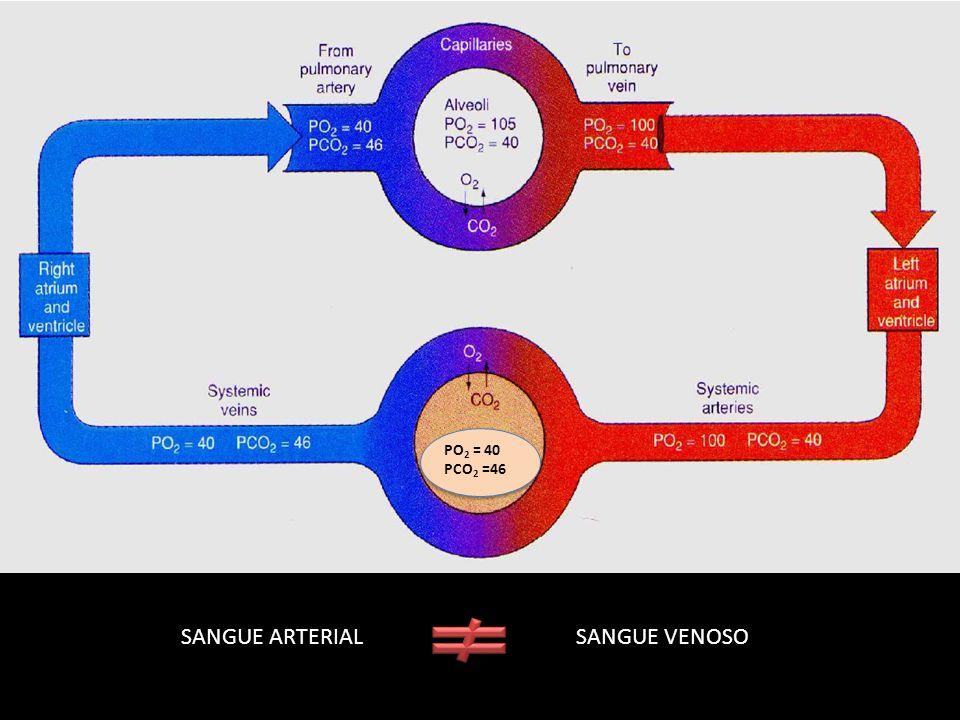SANGUE ARTERIAL SANGUE VENOSO