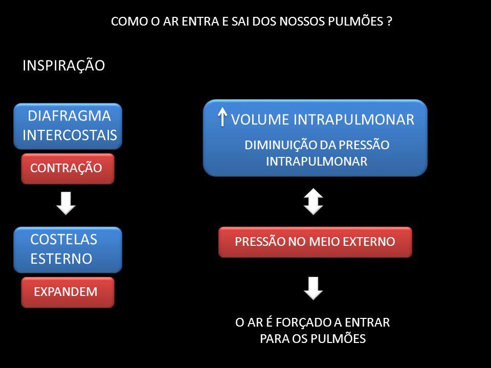 INSPIRAÇÃO DIAFRAGMA VOLUME INTRAPULMONAR INTERCOSTAIS COSTELAS