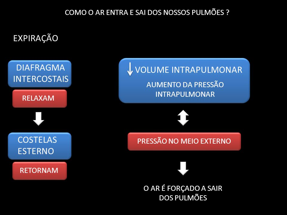 EXPIRAÇÃO DIAFRAGMA VOLUME INTRAPULMONAR INTERCOSTAIS COSTELAS ESTERNO