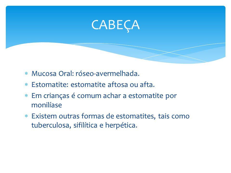 CABEÇA Mucosa Oral: róseo-avermelhada.