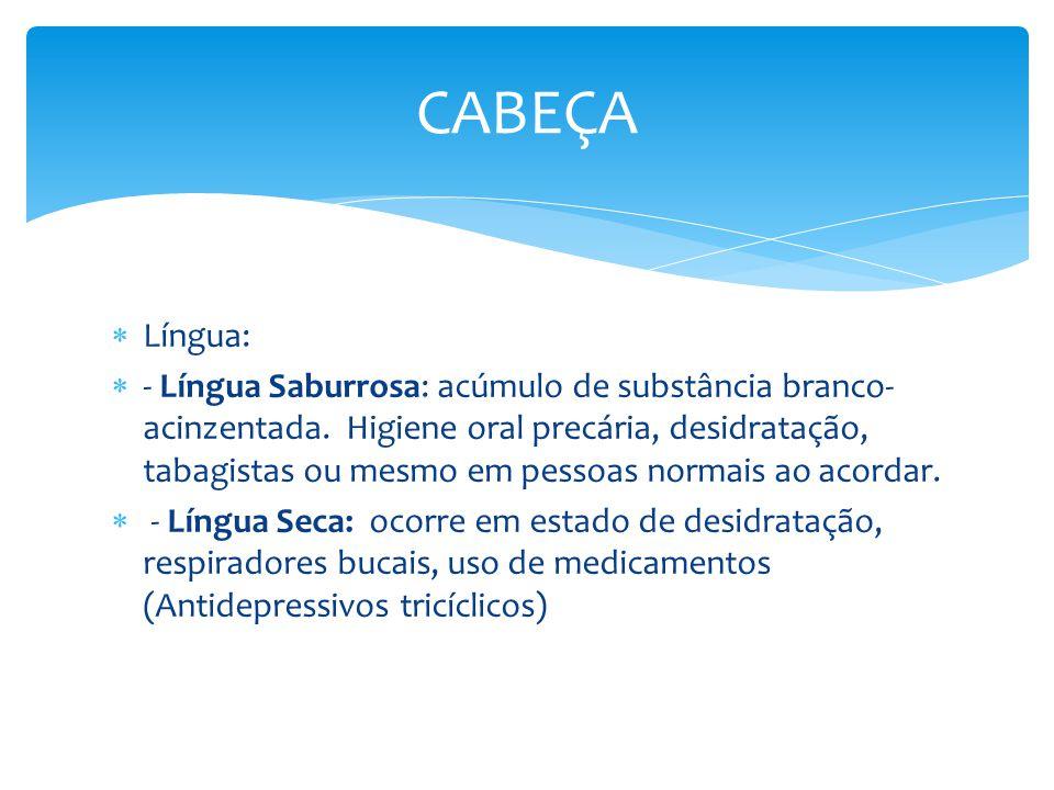 CABEÇA Língua: