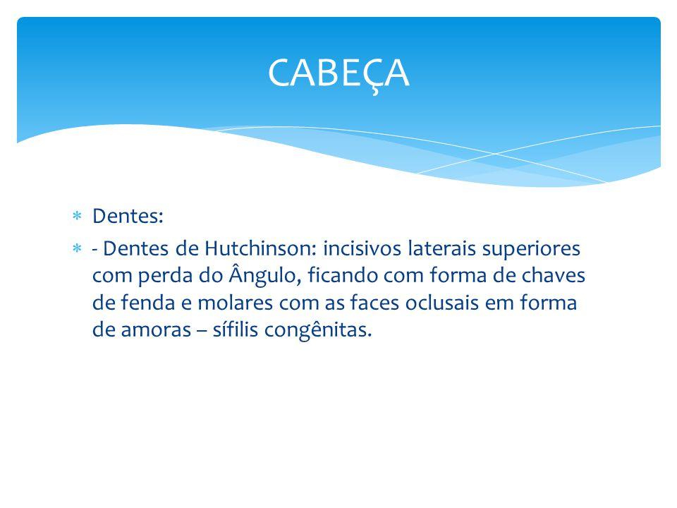 CABEÇA Dentes: