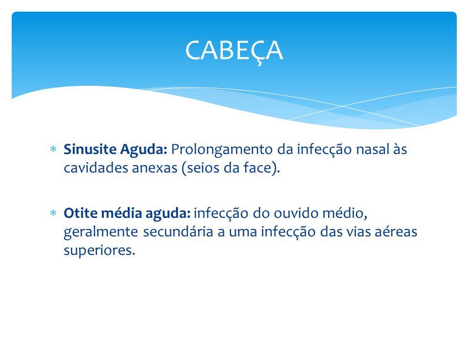 CABEÇA Sinusite Aguda: Prolongamento da infecção nasal às cavidades anexas (seios da face).