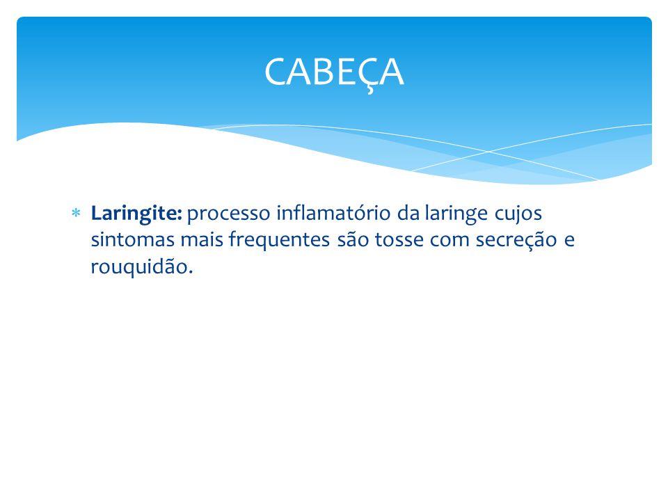 CABEÇA Laringite: processo inflamatório da laringe cujos sintomas mais frequentes são tosse com secreção e rouquidão.
