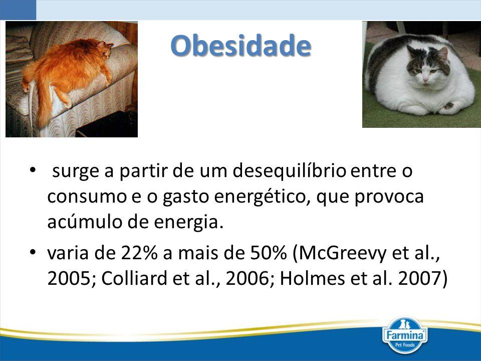 Obesidade surge a partir de um desequilíbrio entre o consumo e o gasto energético, que provoca acúmulo de energia.