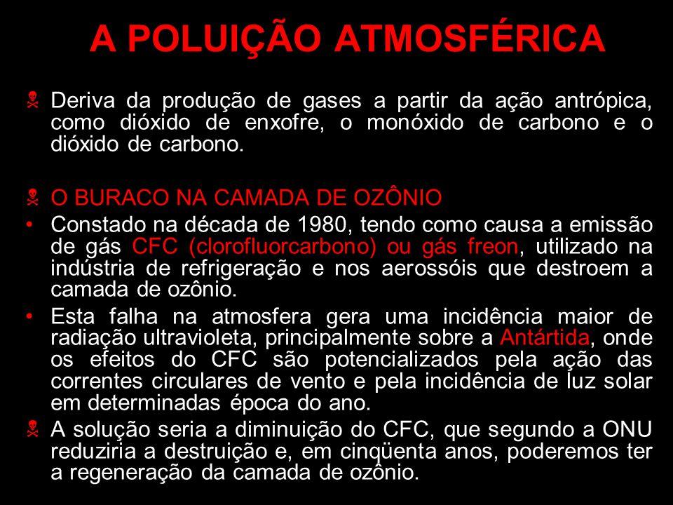 A POLUIÇÃO ATMOSFÉRICA