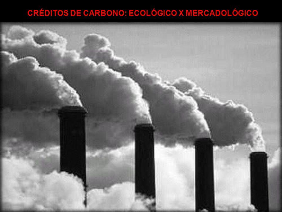 CRÉDITOS DE CARBONO: ECOLÓGICO X MERCADOLÓGICO