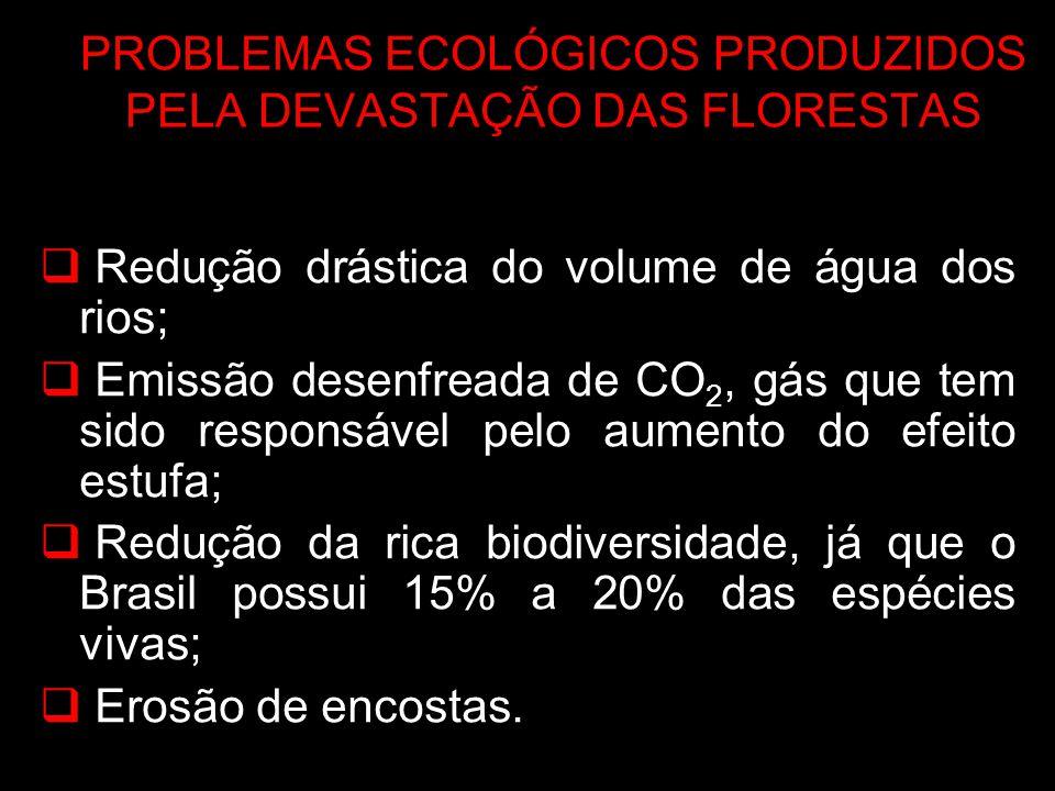 PROBLEMAS ECOLÓGICOS PRODUZIDOS PELA DEVASTAÇÃO DAS FLORESTAS