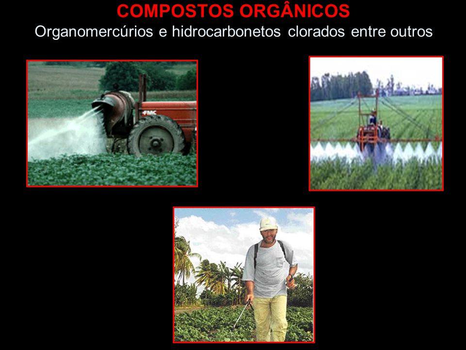 COMPOSTOS ORGÂNICOS Organomercúrios e hidrocarbonetos clorados entre outros