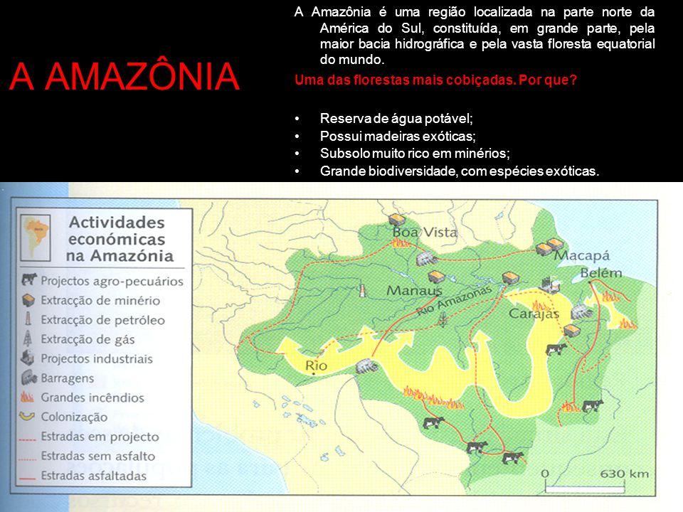 A Amazônia é uma região localizada na parte norte da América do Sul, constituída, em grande parte, pela maior bacia hidrográfica e pela vasta floresta equatorial do mundo.
