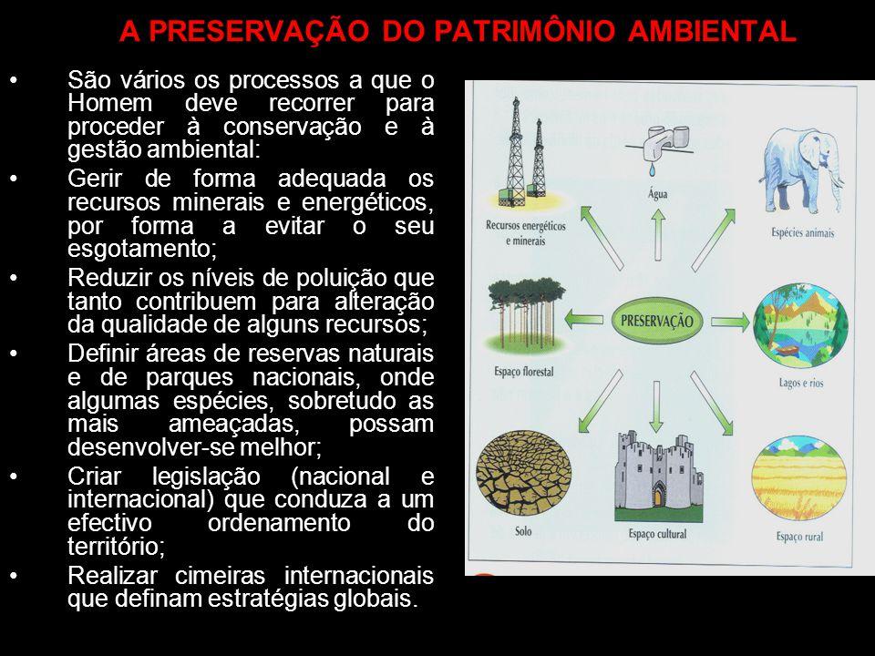 A PRESERVAÇÃO DO PATRIMÔNIO AMBIENTAL