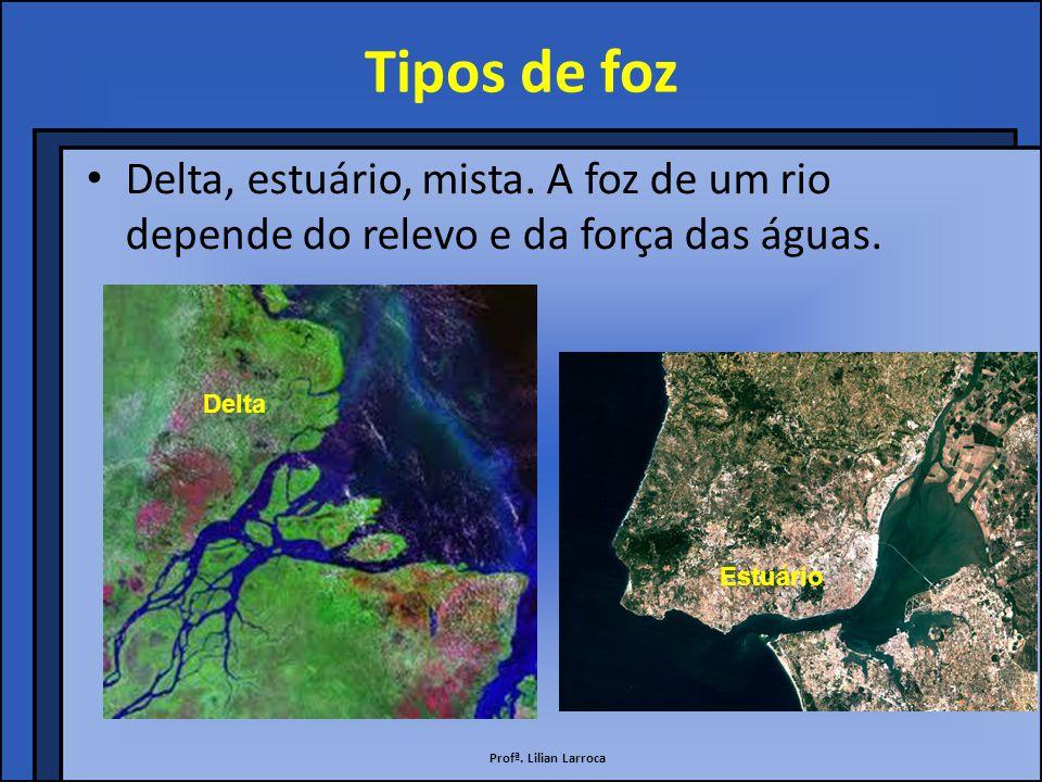 Tipos de foz Delta, estuário, mista. A foz de um rio depende do relevo e da força das águas. Delta.