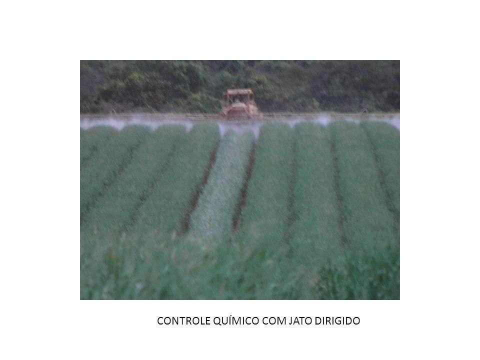CONTROLE QUÍMICO COM JATO DIRIGIDO