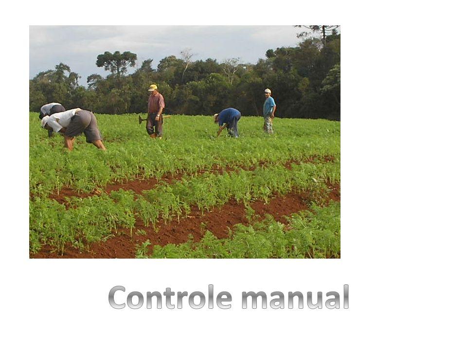 Controle manual