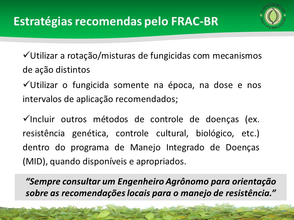 Estratégias recomendas pelo FRAC-BR