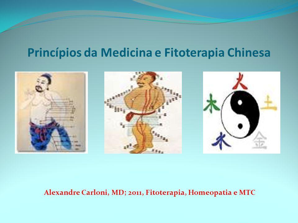 Princípios da Medicina e Fitoterapia Chinesa