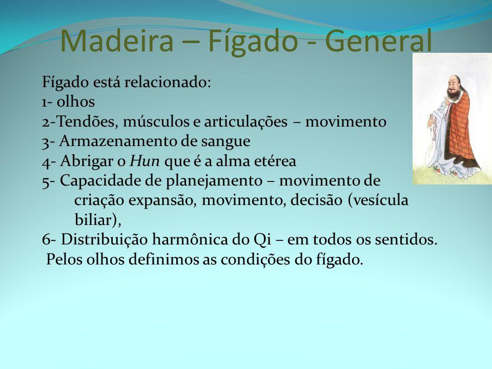 Madeira – Fígado - General