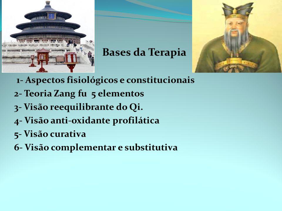 Bases da Terapia 1- Aspectos fisiológicos e constitucionais. 2- Teoria Zang fu 5 elementos. 3- Visão reequilibrante do Qi.