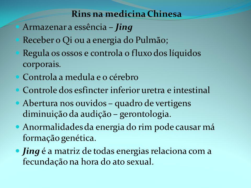 Rins na medicina Chinesa