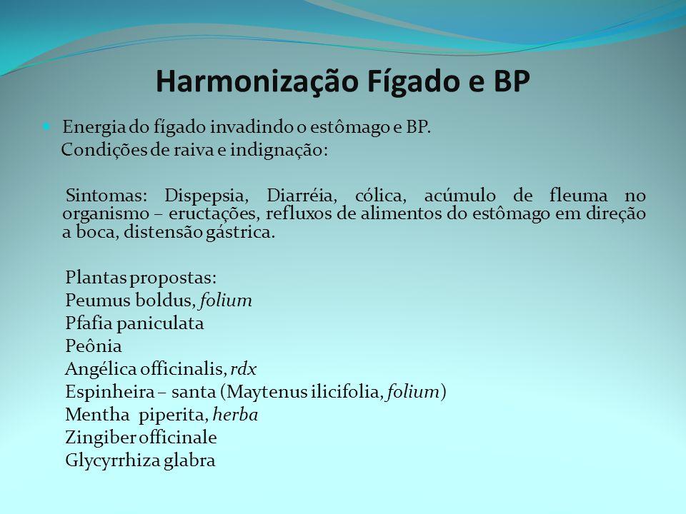 Harmonização Fígado e BP