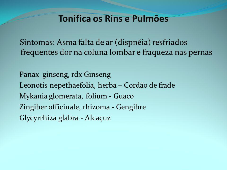 Tonifica os Rins e Pulmões