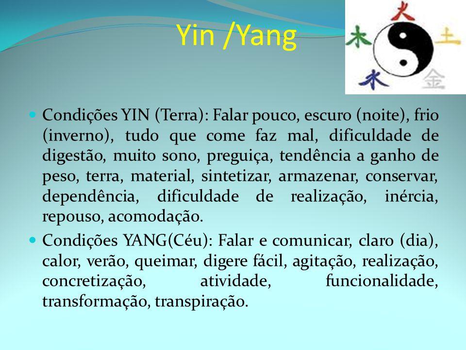 Yin /Yang