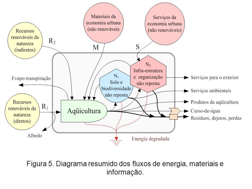 Figura 5. Diagrama resumido dos fluxos de energia, materiais e informação.