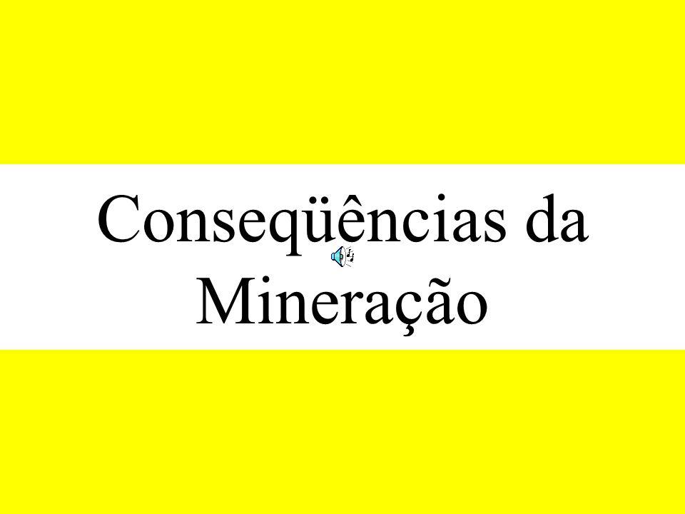 Conseqüências da Mineração