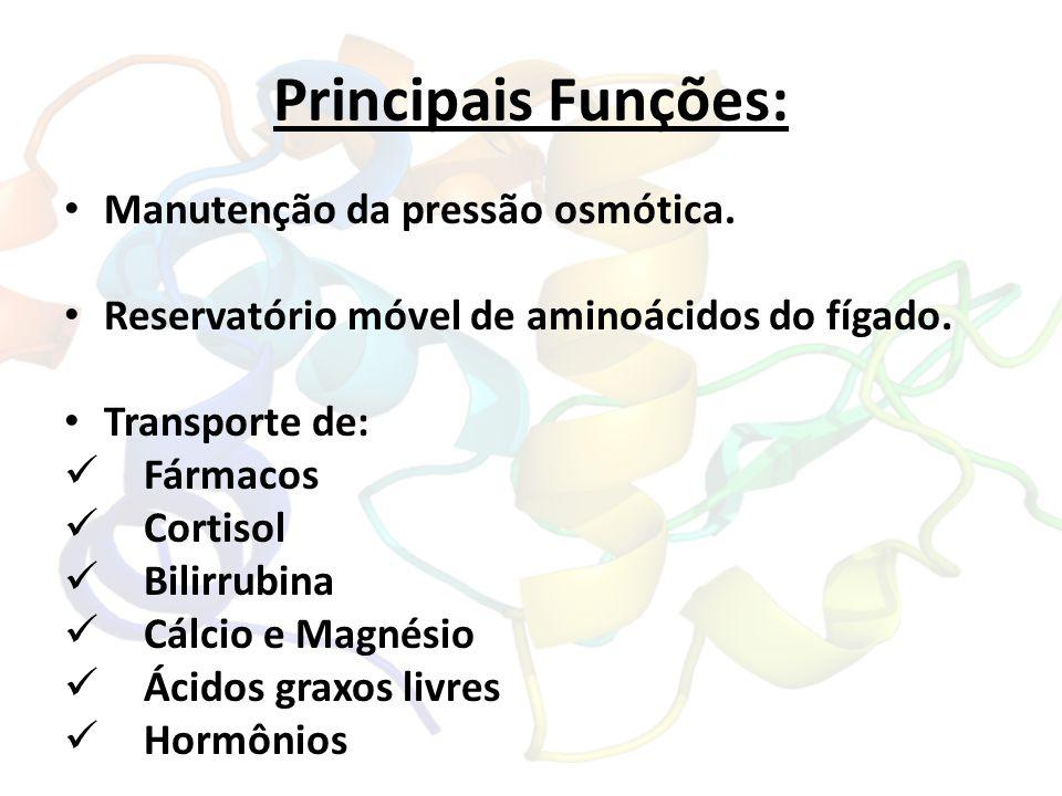 Principais Funções: Manutenção da pressão osmótica.