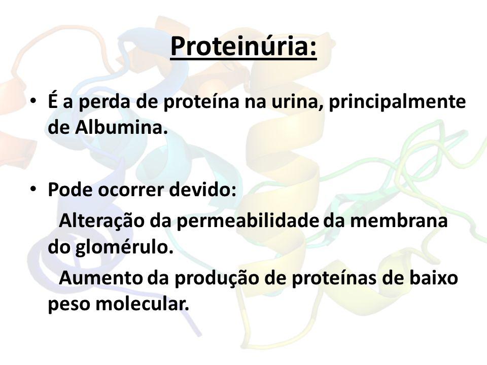 Proteinúria: É a perda de proteína na urina, principalmente de Albumina. Pode ocorrer devido: