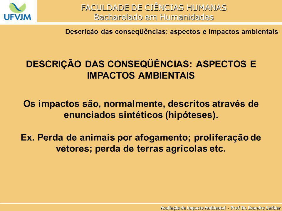 DESCRIÇÃO DAS CONSEQÜÊNCIAS: ASPECTOS E IMPACTOS AMBIENTAIS