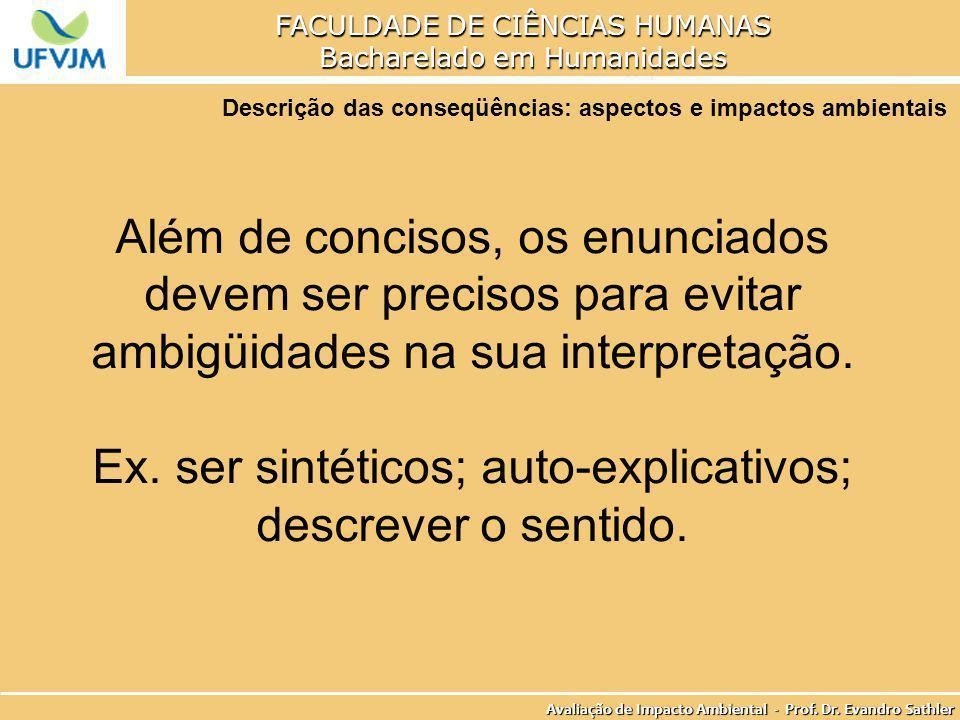 Ex. ser sintéticos; auto-explicativos; descrever o sentido.