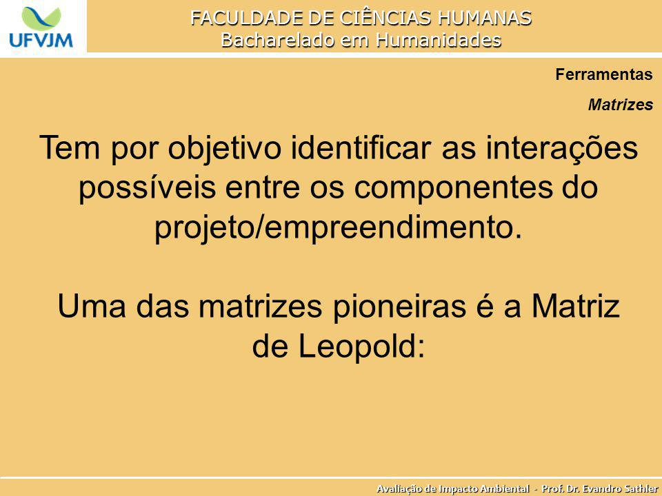 Uma das matrizes pioneiras é a Matriz de Leopold: