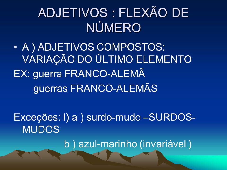 ADJETIVOS : FLEXÃO DE NÚMERO